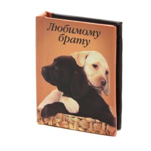Книжка-магнитик Любимому брату
