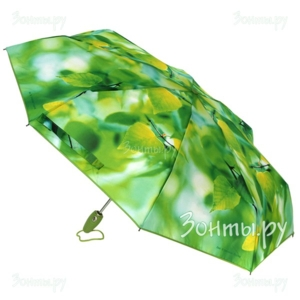 Зонты!зонты!зонты!кошельки!