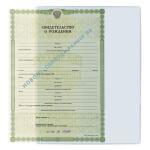 Карман для документов А4 и свидетельства о рождени