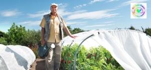 БашАгроПласт садоводам: парники (3,4,6,8 м), капел