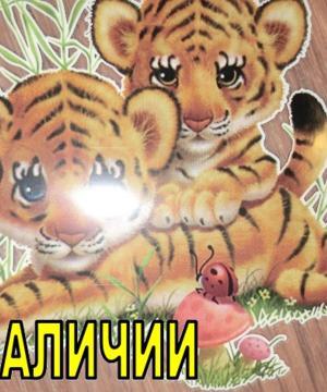 medium-Термотрансфер Тигрята