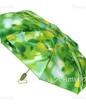 medium-Зонты!зонты!зонты!кошельки!